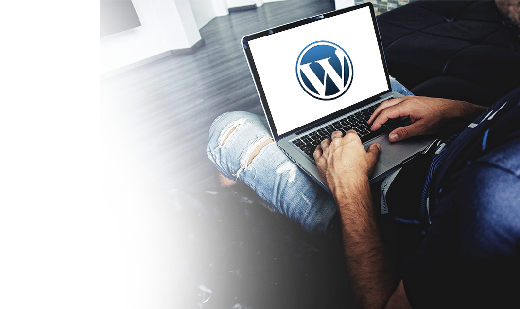 Custom WordPress CMS Website Development Services