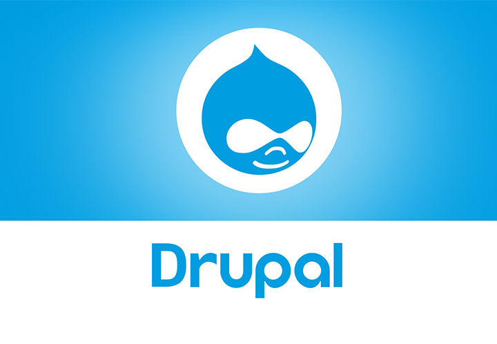 drupal based ecommerce website development